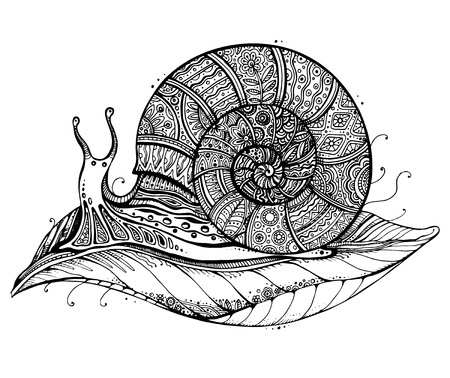 Vector illustration of a totem animal Snail on leaf in black and white style