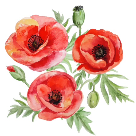 bouquet of red watercolor poppy flowers