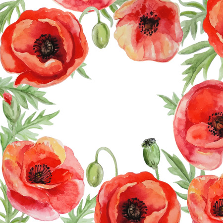 single flower: Vector frame with red watercolor poppy flowers