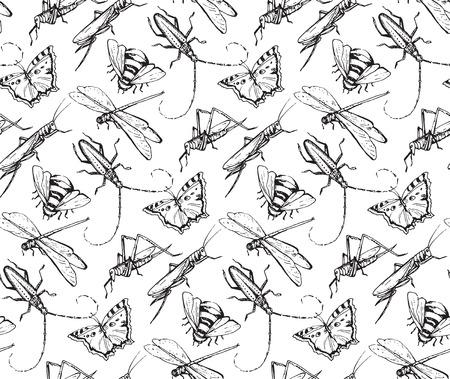 昆虫は、トンボ、飛ぶ、蝶、甲虫、バッタと decorativeseamless パターンをスケッチします。手には、ベクター グラフィックが描画されます。