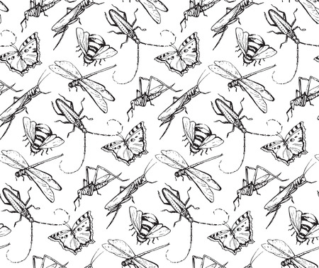 dragonfly: Insects sketch decorativeseamless pattern with dragonfly, fly, butterfly, beetle, grasshopper. Hand drawn vector illustration.