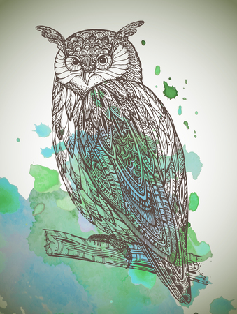 isolated owl: Vector illustration of wild totem animal - Owl in ornamental graphic style with watercolor background Illustration