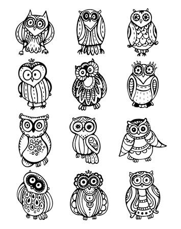 sowa: Kolekcja wektora cute czarno-białe sowy. Ręcznie rysowane styl graficzny Ilustracja