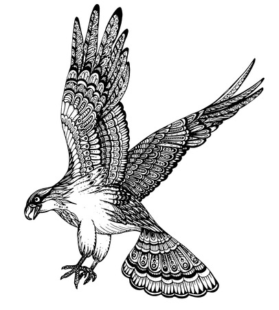 hawks: Vector hand drawn illustration of decorative ornamental eagle