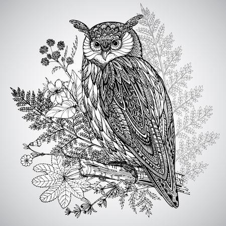 owl illustration: Vector illustration of wild totem animal - Owl in ornamental graphic style with watercolor background Illustration