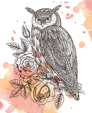 Vector illustration of wild totem animal - Owl in ornamental graphic style with roses, leaves. Watercolor background