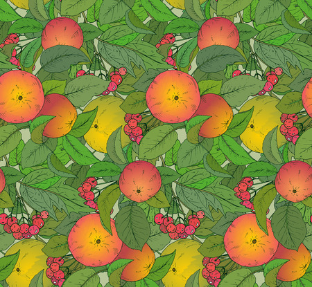guelder rose: Seamless vector pattern with hand drawn apple branches and guelder rose berries Illustration
