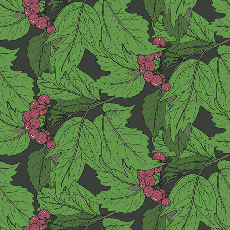 guelder rose: Seamless vector pattern with hand drawn guelder rose branches with berries and leaves Illustration