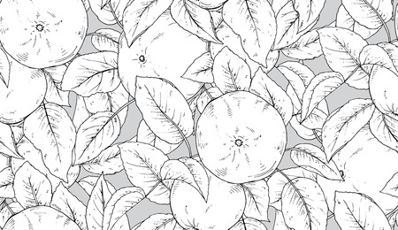 wite: Seamless vector pattern with hand drawn apple branches in black and wite colors