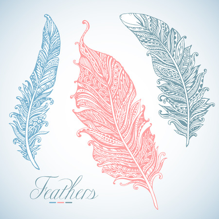 detail: Hand drawn stylized feathers vector collection. Set of doodle soft ornamental feathers in light colors. Illustration