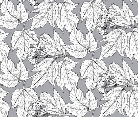 guelder rose: Seamless vector pattern with hand drawn guelder rose branches with berries and leaves. Monochrome graphic illustration