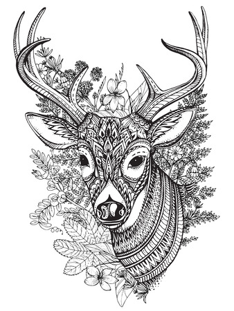 Hand drawn vector horned deer with high details ornament, flowers and herbs on white background