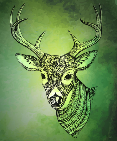 horned: Hand drawn vector horned deer with  high details ornament on green watercolor background Illustration