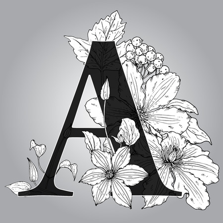 clematis flower: Vector Floral monogram with  hand drawn clematis flowers. Capital  Letter A. Black and white vector illustration Illustration