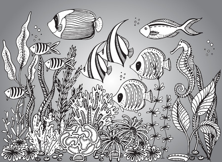 seahorse: Vector monochrome hand drawn illustration with seashell, tropical fishes, seahorse, algae, corals. Underwater world. Black and white hand drawn illustration