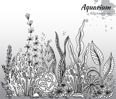 sea fishing: Vector monochrome hand drawn illustration with aquarium algae, corals. Underwater world. Black and white hand drawn illustration