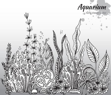Vector zwart-wit hand getrokken illustratie met aquarium algen, koralen. Onderwaterwereld. Zwart-witte hand getrokken illustratie