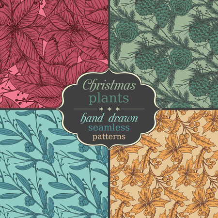 Set of four seamless patterns with hand drawn winter plants - poinsettia, mistletoe, fir-cone, holly.Christmas and New Year sketch background. Can be used for greeting and invitation cards, banners, postcards, prints on textile, paper, scrapbooking.