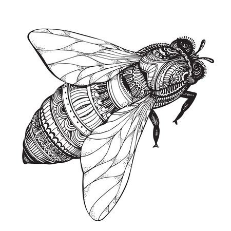 bee on white flower:  honey bee in style. Black and white illustration