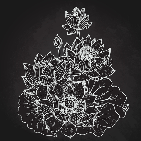 Beautiful monochrome vector floral bouquet of lotus flowers and leaves in graphic style. Ilustrace