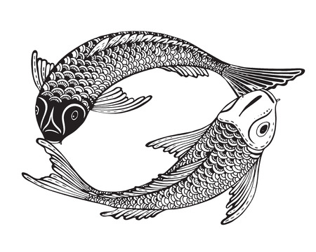Hand drawn vector illustration of two Koi fishes (Japanese carp). Symbol of love, friendship and prosperity. Black and white image. Can be used for tattoo, print, t-shirt, coloring books.