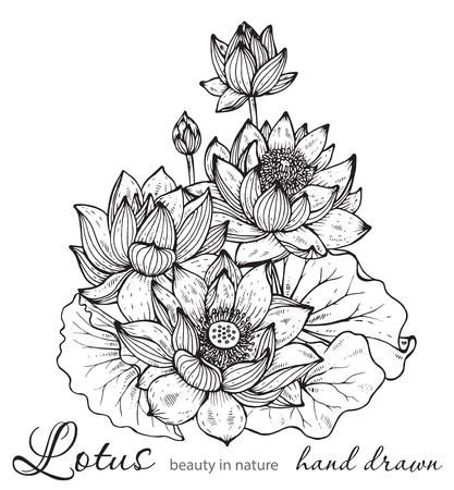 Mooi zwart-wit vector bloemen boeket van lotusbloemen en bladeren in grafische stijl.