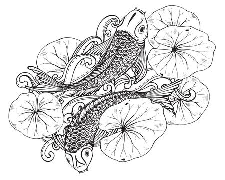 Hand drawn illustration vectorielle de deux poissons Koi (carpe japonaise) avec des feuilles de lotus. Symbole de l'amour, l'amitié et la prospérité. Image en noir et blanc. Peut être utilisé pour le tatouage, impression, t-shirt, livres à colorier. Banque d'images - 53406878