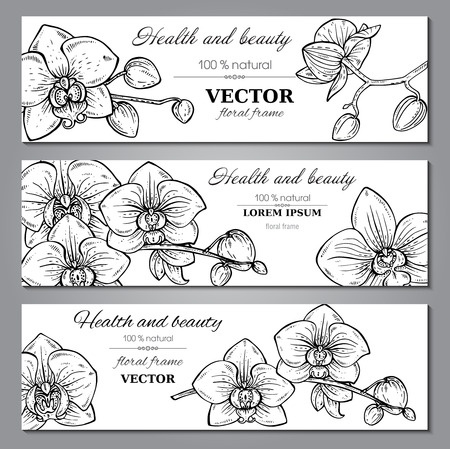 Set of three horizontal banners with beautiful orchid branches with flowers in graphic style. Vector floral headers