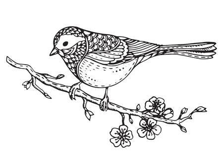 tomtit: Hand drawn ornate bird on sakura branch with flowers. Black and white vector illustration. Isolated on a white background.