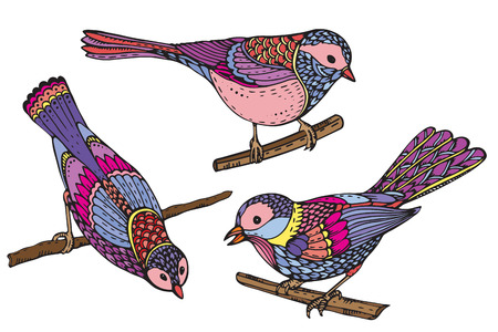 tomtit: Ste of hand drawn ornate birds. Beautiful colorful vector illustration. Each object is isolated on a white background. Illustration
