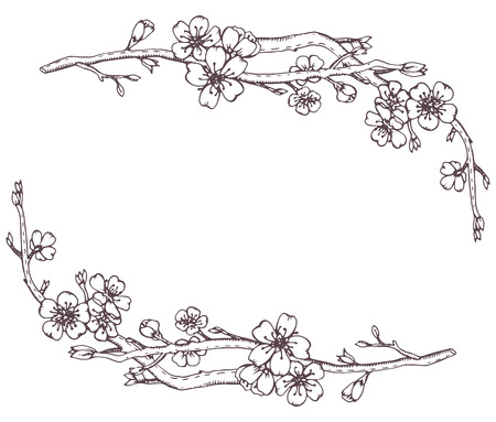Vector frame with hand drawn graphic branches of a blossoming cherry tree (sakura) Vettoriali