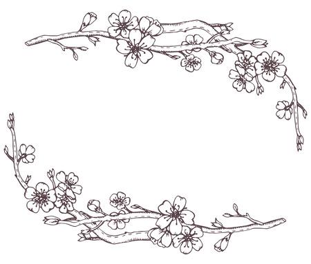 Vector frame avec des branches graphiques dessinés à la main d'un arbre en fleurs de cerisier (sakura)
