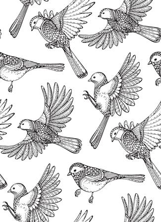 Patrón sin fisuras con las aves ornamentales dibujados a mano. vector de fondo blanco y negro. Ilustración de vector