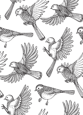 tomtit: Seamless pattern with hand drawn ornate birds. Black and white vector background. Illustration