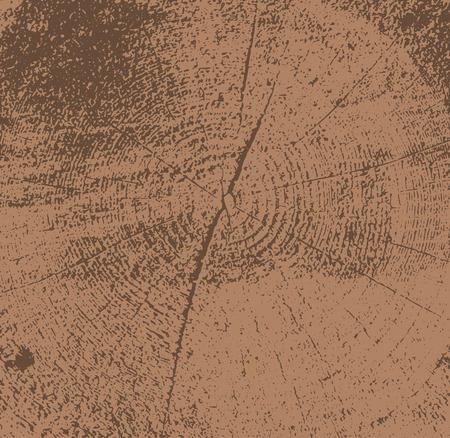 broun: Vector illustration of tree cross section. Wooden broun texture background.
