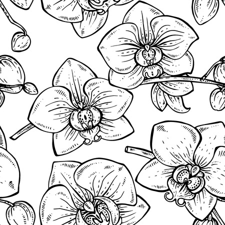 fragrant bouquet: Floral seamless pattern with hand drawn orchid branches with flowers for fabrics, textiles, paper. Illustration