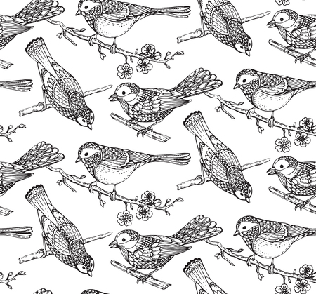 titmouse: Seamless pattern with  hand drawn ornate birds on sakura flower branches. Black and white vector background.