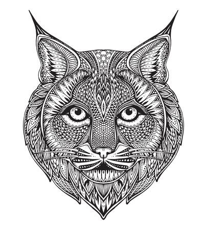 gato dibujo: Dibujado a mano lince adornado gráfico con la ilustración del doodle pattern.Vector floral étnico de libro para colorear, tatuajes, imprimir en la camiseta, bolsa. Aislado en un fondo blanco.