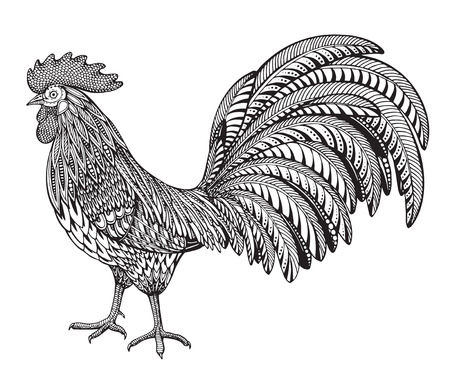 black and white hand drawn vector illustration of fiery rooster
