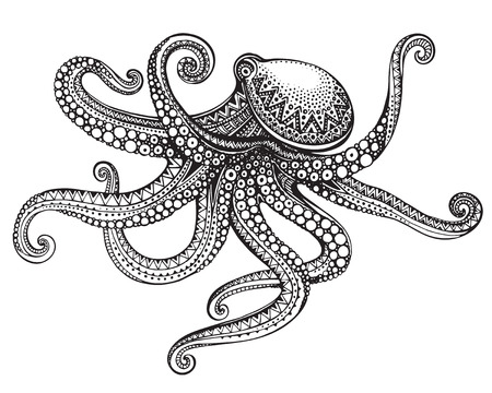 Hand drawn octopus in graphic ornate style. Vector illustration for tattoo, coloring book, print on t-shirt, bag. Black and white colors