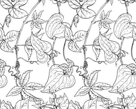 bindweed: Vector seamless pattern with hand drawn bindweed flowers.