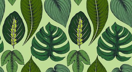 手描きの熱帯のヤシの組成とシームレスなパターンをベクトルの葉、ジャングルの植物。美しいカラフルな自然な無限の背景。