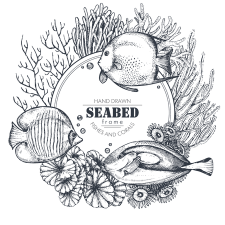 Monochrome frame with space for text and hand drawn underwater natural elements - reef corals and swimming exotic fishes in graphic sketch style. Black and white vector illustration and coloring page.