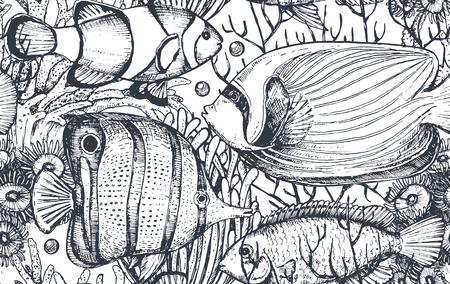 Wektor monochromatyczny wzór morza bez szwu tropikalnych ryb, glonów, korali. Podwodny świat. Czarno-białe ręcznie narysowane graficzne tło końca