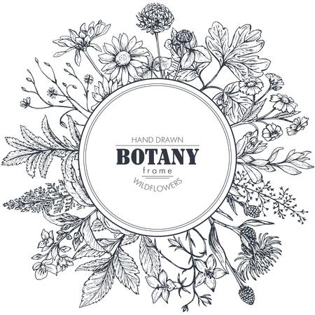 Marco de círculo de vector con elementos dibujados a mano blanco y negro de la hierba y del wildflower para las invitaciones de la boda, tarjetas de cumpleaños.