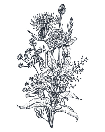 Vector floral bouquets with black and white hand drawn herbs and wildflowers in sketch style.