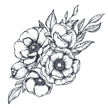 Vector floral composition of hand drawn anemone flowers