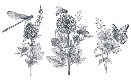 Set of three vector floral bouquets with black and white hand drawn herbs, wildflowers and insects 일러스트