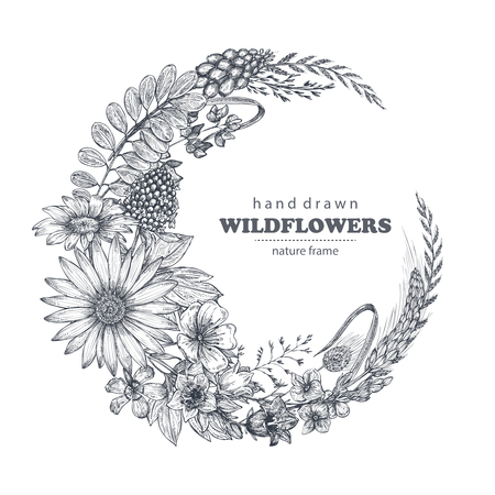 Vector frame with herb and wildflower elements. Illustration