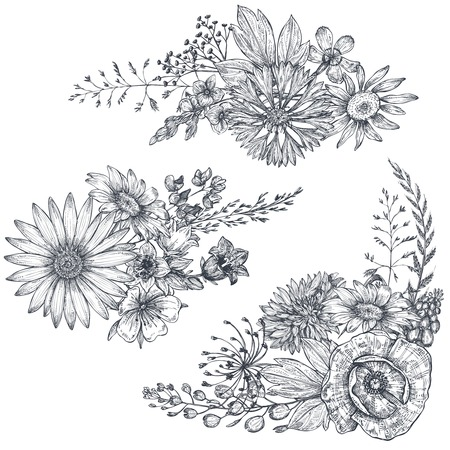 Vector floral bouquets with herbs and wildflowers.
